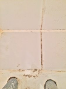 Comment combattre la moisissure www.soodeco.fr