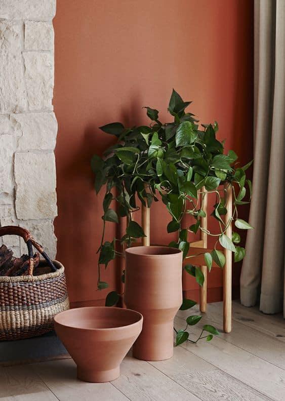 Je veux du rose et des cactus www.soodeco.fr/