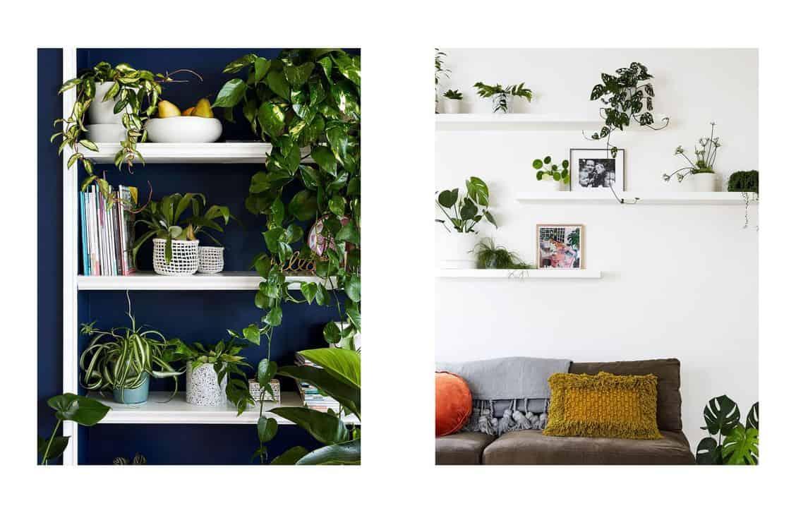 La maison aux plantes www.soodeco.fr/